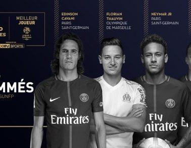 UNFP Giocatore dell'anno della Ligue 1