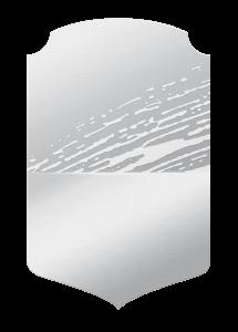 FUT 20 card-argento