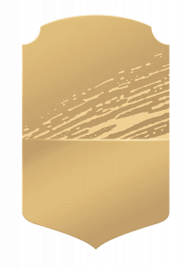 card-bronzo FUT 20